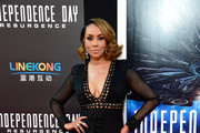 Vivica A. Fox Sheer Dress
