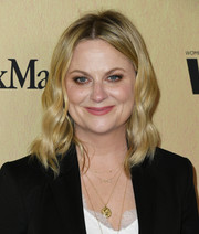 Amy Poehler looked lovely with her face-framing waves at the 2019 Women in Film Gala.