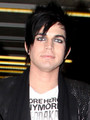 Adam Lambert Ferras rumored