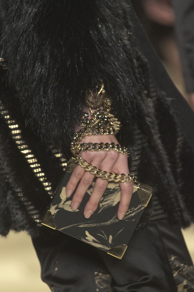 Roberto Cavalli at Milan Fall 2013 (Details)