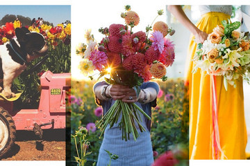 The Best Floral Stylists to Follow on Instagram