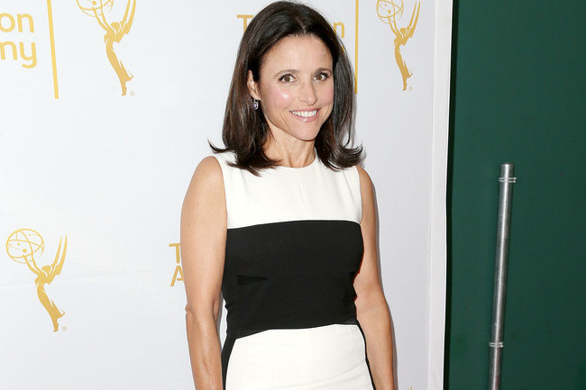 Julia Louis-Dreyfus' Minimalist Look