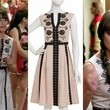 Lea Michele's Embroidered Dress on 'Glee'