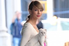 Taylor Swift Takes Her Cat Out for a Walk