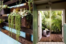 Easy Ideas to Green Your Home (Whether You Rent or Own!)