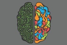 Are You More of a Left-Brained or Right-Brained Person?