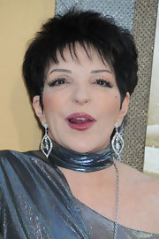 Liza Minnelli showed off her fashion savvy sense in a metallic silver ensemble, which she paired with dangling diamond earrings.