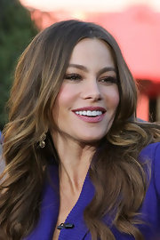 Sofia Vergara wore a creamy muted berry lipstick while appearing on 'Extra.'