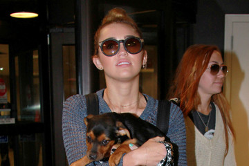 Miley Cyrus Brandi Cyrus Miley Cyrus and Family With Puppy at the Airport