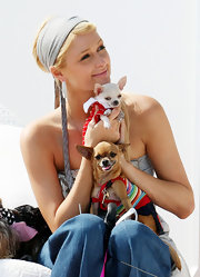 Paris looks LA chic in a gray head scarf while holding her darling pups.