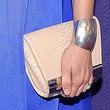 Amy Smart Frame Clutch