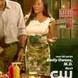 Hart of Dixie Pencil Skirt