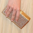 Dakota Fanning Box Clutch