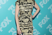 Emily Deschanel Print Dress