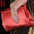 Kathy Griffin Satin Clutch