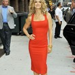 Kyra Sedgwick Clothes - Day Dress