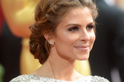 Maria Menounos Braided Updo