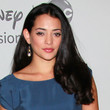 Natalie Martinez Hair - Long Curls