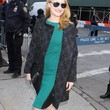 Patricia Clarkson Evening Coat