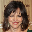 Sally Field Hair - Flip