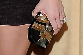 Shantel VanSanten Sequined Clutch