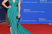 Sophia Bush Evening Dress