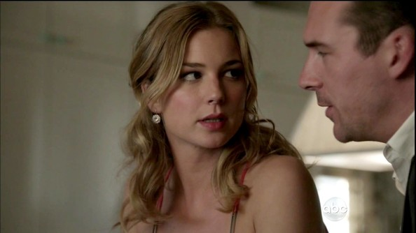 Emily VanCamp Diamond Spheres
